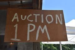 Auction 1 PM (Adventurer Dustin Holmes) Tags: 2018 sign heritagedaysfestival heritagedayfestival festival festivals bakercreekheirloomseeds bakersvillepioneervillage mansfieldmo mansfieldmissouri missouri ozarks wrightcounty 100pm 1300 1pm
