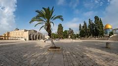 FMG_2530 (Marco Gualtieri) Tags: israele palestina galilea giudea terrasanta pellegrinaggio marcone1960 nikond850 d850