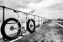 Full_Circle (PJT.) Tags: crosby pugsley surly single speed fat bike snow sand railing tarmac metallised windblown dune anthony gormly sculpture cycle white clouds sky leading line sign merseyside lancashire england fff middleburn beach sea promenade coastline circle full