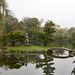 Japanese Garden, Delaware Park