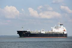 STEALTH FALCON (angelo vlassenrood) Tags: ship vessel nederland netherlands photo shoot shot photoshot picture westerschelde boot schip canon angelo walsoorden stealthfalcon tanker