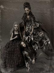 grey beauties (dolls of milena) Tags: bjd abjd resin doll popovy sisters peewit metis codie marmite sue angel egg butterfly portrait group dolls grey