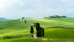 val d'Orcia-019 (bonacherajf) Tags: italia italie valdorcia podere terrapille gladiator cyprés cypress tuscany toscane