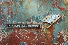 Throat Punch (Wayne Stadler Photography) Tags: abandoned preserved junkyard georgia classic automotive derelict overgrown vehiclesrust rusty retro vintage oldcarcity rustographer rustography white