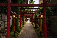 #168 Walking past Homyoji (tokyobogue) Tags: tokyo japan ikebukuro nikon nikond7100 d7100 sigma sigma1750mmexdcoshsm homyoji homyoshrine shrine dusk afternoon torii gates 365project