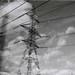 000023 (Olga. S) Tags: olympus trip35 ilford film movement monochrome mystery