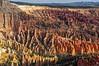 Hoodoos in sunshine and in shadow (My Americana) Tags: brycecanyonnationalpark brycecanyon bryce canyon inspirationpoint hoodoo utah ut scenic landscape