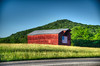 DMT_20180601190248 (Felicia Foto) Tags: grass trees field sky barn americanflag flag america rural williamsoncountytennessee tennessee middletennessee peytonsvilletennessee red green structure agricultural agriculturalstorage hdr highdynamicrange 3xp allrightsreserved denisetschida nikon nikond600 d600 photomatix photoshopcc2018 photoshop handheld summer sunset evening road hill pavement geotagged