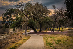 Day in the Park (Jims_photos) Tags: texas trees unitedstates outdoor outside peasepark adobelightroom adobephotoshop austintexas austintx austin shadows sunnyday daytime jimallen jimsphotos jimsphotoswimberleytexas lightroom landscape txpark cloudy clouds nopeople nikond750 morninglight