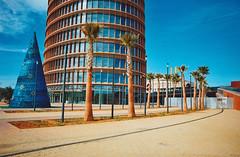 Munchkin Christmas Tree (Blao - GrailK) Tags: contax139 film spain argentique analog blue sevilla espagne christmas palmtrees tower building architecture colours