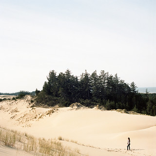 Disappearing Dunes
