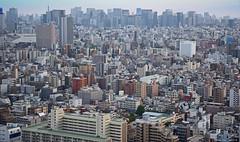 Tokyo: Sprawling Metropolis (Eddie Diaz Photography Collection) Tags: alive sprawling congested skyscraper buildings city crowded tokyo japan metropolis vast homes