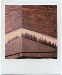 polaroid1769 (www.cjo.info) Tags: 600 600color bloomsbury england europe europeanunion gordonsquare integral london polaroid polaroidoriginals polaroidslr680 unitedkingdom westerneurope abstract analogue architecture brick building concrete damp decay film lines modernbuilding pattern urban wall