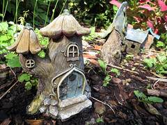 Faery Houses (meeko_) Tags: faery house fairy faeryhouse fairyhouse faerygarden fairygarden usf botanical gardens garden botanicalgarden usfbotanicalgardens university south florida universityofsouthflorida tampa