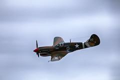 IMG_7802 (micro_lone_patriot) Tags: p40 warhawk maam wwiiweekend reading pa fighter warbird thejackyc
