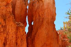 IMG_2130 (Ichiban7too) Tags: bryce national park canyon utah nature hoodoo red sandstone