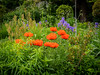Mill Deane Gardens, Blockley (Bob Radlinski) Tags: blockley cotswolds england europe gloucestershire milldenegardens uk travel