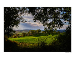 (david Ramalleira) Tags: davidramalleiraphotography davidramalleira paisaje landscape landscapes nature naturaleza natureart naturephotography naturesart naturesfinest nikon primavera spring