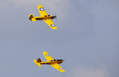 Chipmunk & Magister (Bernie Condon) Tags: milesmagister miles magister trainer raf royalairforce military vintage preserved classic shuttleworthcollection historice dehavilland chipmunk rcaf royalcanadianairforce aircraft plane flying aviation aerobatics display formation uk british shuttleworth collection oldwarden airfield airshow navyday june june2018