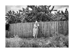 Spring work (Jan Dobrovsky) Tags: oldwoman leicaq odesa monochome blackandwhite tree work figure ukraine document