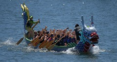 Dragon Boat Racing Team (Scott 97006) Tags: boat dragon team river water people paddle muscles
