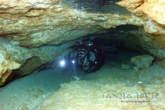 Eagle's Nest (SantaFeSandy) Tags: eagles nest eaglesnest cavedivers cave divers backmount wesskilespeacockspringsstatepark peanuttunnel virgiliogonzalez agnesmilowka peterkleinhenz floridafishwildlifeconservationcommission interpretivewriting educationaltrailboards educational sandrakosterphotography canon ikelite underwater underwaterphotography santafesandy may2018 trail board trailboards aquifer karstwindow limestone sinkhole bodiesofwater actor photographer stuntdouble sanctum httpwwwmyfwccom