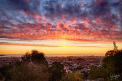 Golden Hour & Sun Pillar (Astro☆GuiGeek) Tags: sunset cloudsstormssunsetssunrises sun dusk ville city crépuscule laserena coquimbo chile chili skyinchile cielduchili canonphotography canon canoneos700d rebelt5i eos700d sigma1835mm sigmaart