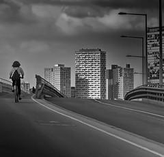 the way into the city (heinzkren) Tags: schwarzweis blackandwhite bw sw monochrome urban skyline skyscrapper hochhaus radweg weg fahrbahn street streetphotography bicycle biker wien vienna sport sky clouds canon powershot wienerberg brücke bridge building gebäude