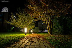 Night shift in Autumn (fabioluisi90) Tags: work flight controller iss los break trees lights grass autumn germany deutschland germania pausa lavoro autunno luci foglie leaves night photography nikon d3200 samyang 14mm low light iamnikon