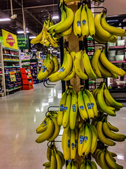2018 - photo 162 of 365 - grocery store bananas (old_hippy1948) Tags: bananas