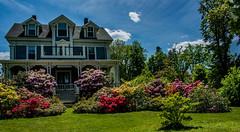2018 - photo 163 of 365 - ThornLeigh House Wolfville, Nova Scotia (old_hippy1948) Tags: