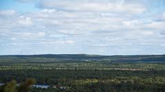 Green Space D7C_5527 (iloleo) Tags: landscape manitoulinisland vista windmills forest ontario summer nature nikon d750 lakes