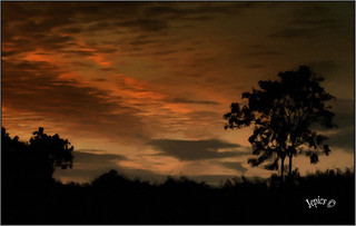Red Sky. ..