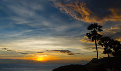 Sunset with Palms at Promthep Cape, Phuket island, Thailand (Phuketian.S) Tags: sunset promthep cape tree palm sky sea cloud sun water landscape nature thailand phuket island beach phuketian