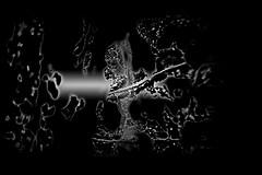 (⨀) Tags: theotherside universe 118 virtuallifeform