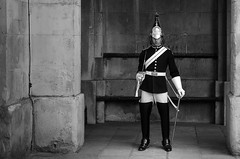 guard DSC_5040 (mehmi's) Tags: mehmi rajesh palace buckingham london cavalry hold house guard horse