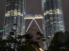 Petronas Towers (m_artijn) Tags: petronas towers skybridge tree treetop leaves night dark light kuala lumpur mys