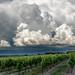 Formation orageuse vignoble cognaçais 03 Juin 2018