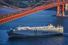 baltic highway vehicle carrier (pbo31) Tags: bayarea california nikon d810 color june 2018 boury pbo31 sanfrancisco goldengatebridge 101 bridge goldengatenationalrecreationarea marincounty northbay batteryspencer marinheadlands bay pacific ocean ship container sail over orange traffic roadway blue westcoast sunset shadow k