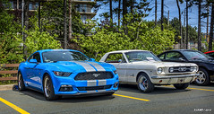 2017 Ford Mustang & 1966 Ford Mustang (kenmojr) Tags: car auto automobile vehicle transportation classic antique vintage halifax jasnow funeral novascotia claytonpark maritimes maritimeprovinces atlantic atlanticprovinces canada easterncanada carshow june 2018