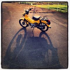 Honda CrossCub110 JA45 (foxfoto_archives) Tags: apple iphone6plus instagram honda crosscub110 crosscub cc110 cub ja45 supercub supercub60th cub60th supercub100million cub100million ホンダ クロスカブ110 クロスカブ カブ スーパーカブ カブ主 バイクが好きだ iphone 