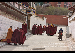 Gelukpa monks, Labrang Monastery, Xiahe, Gansu, China (jitenshaman) Tags: travel worldtravel destination destinations china gansu tibetan tibet chinese monastery gompa buddhist buddhism tibetanbuddhism tibetanbuddhist religious religion colourful colour tibetans sacred landofsnows belief tradition culture cultural faith devote devotee xiahe labrang labelang labulang labrangmonastery holy gelukpa gelugpa yellowhat dalailama monk monks robe robes costume traditional red monastic fraternal fraternity