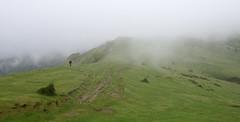 Paseoan (Paulo Etxeberria) Tags: arraba gorbeialdea gorbeiakonaturaparkea parquenaturaldegorbeia ibiltaria caminante hiker randonneur lainoa niebla mist brouillard