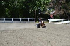 DSC_4091 (Primespot Photography) Tags: show horse horseshow game games horsegames barrels barrells barrals barralls pony