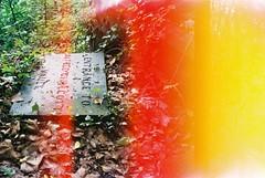 Crypt entrance, lightleak (knautia) Tags: arnosvalecemetery bristol england uk may 2018 film ishootfilm olympus xa2 fuji superia 400iso olympusxa2 nxa2roll18 cemetery graveyard gravestone