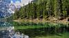 Lago di Braies - Trentino-Alto Adige - Italia (Felina Photography - in Ticino :-)) Tags: pragserwildsee lagodibraies lac see meer lago lake dolomiti dolomites italia italy italien italië