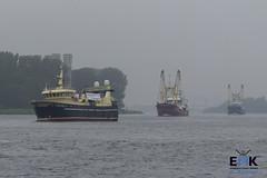 UK 642, KW 88 en UK 195 (Romar Keijser) Tags: kotter visserij emk eendracht maakt kracht protest amsterdam dam aanlandplicht discard ban