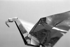 2018061017 (J E) Tags: ilford delta 3200 1250 canon 1nrs bw film 35mm origami dragon paper diafine