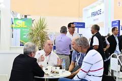 SIPSA-SIMA 2017 (SIPSA-SIMA) Tags: sipsa sima salon exhibition exposition tradeshow génétique lait froid semence pêche agriculture professionnels professional alger algerie algeria algiers