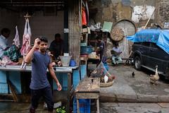 Butcher shop (SaumalyaGhosh.com) Tags: butcher people color india kolkata animals animal street streetphotography documentation documentry